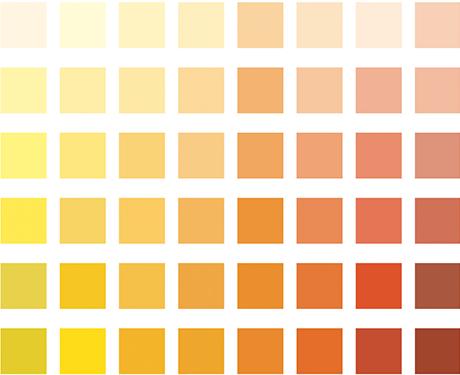 Colori boero catalogo colori per dipingere sulla pelle for Catalogo colori per interni